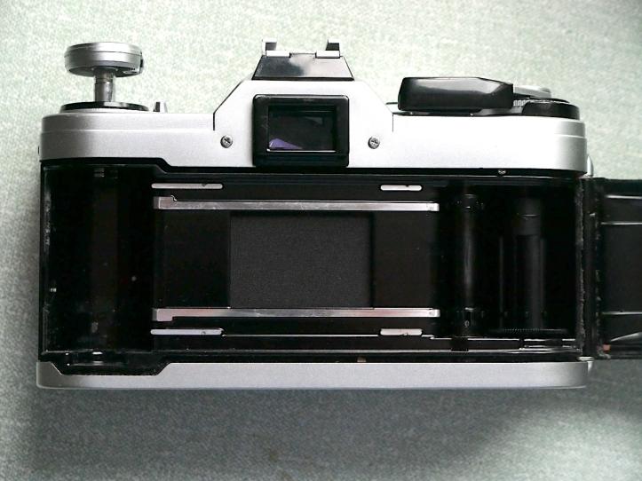 P1010773
